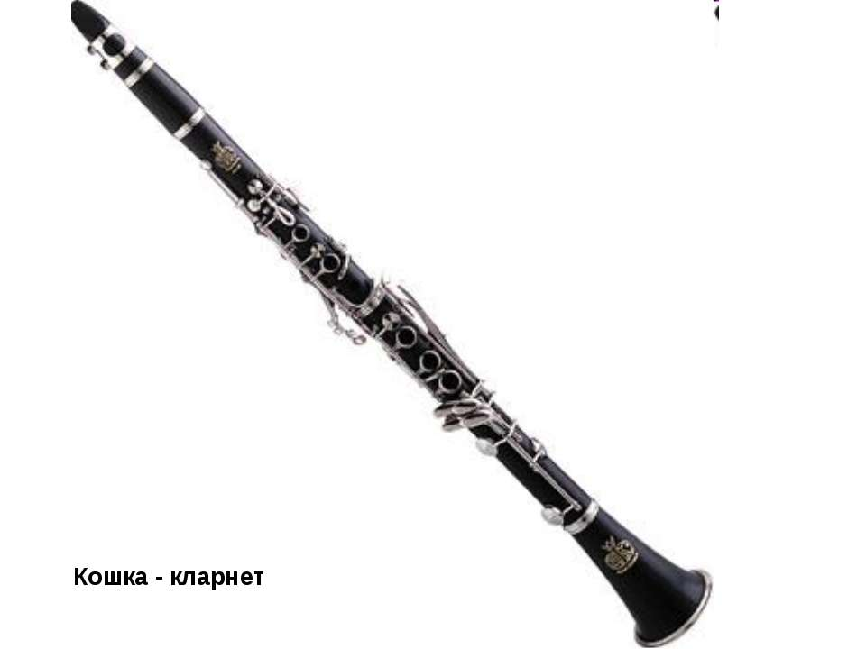 Кошка - кларнет