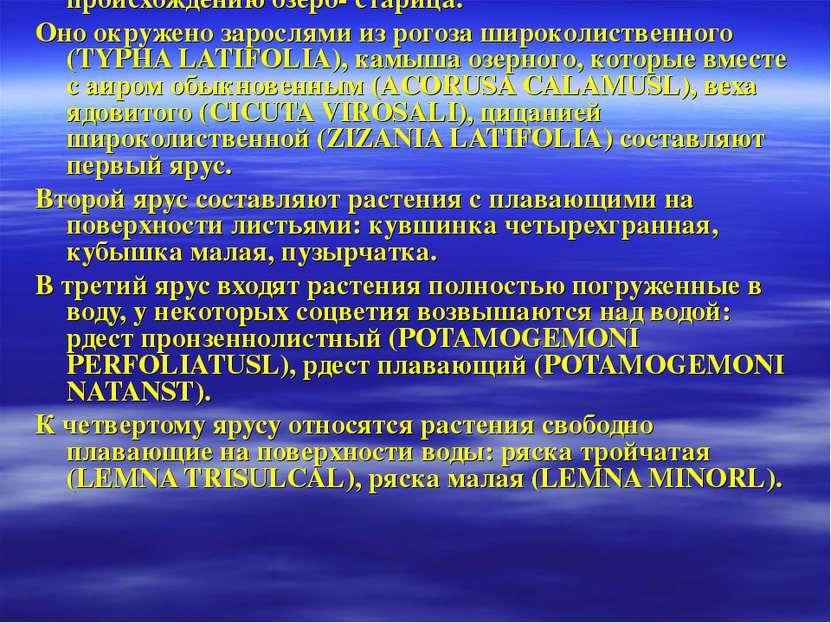 Геоботаническое описание №1 (Исследуемого участка озера Сластино.). Дата: 26....