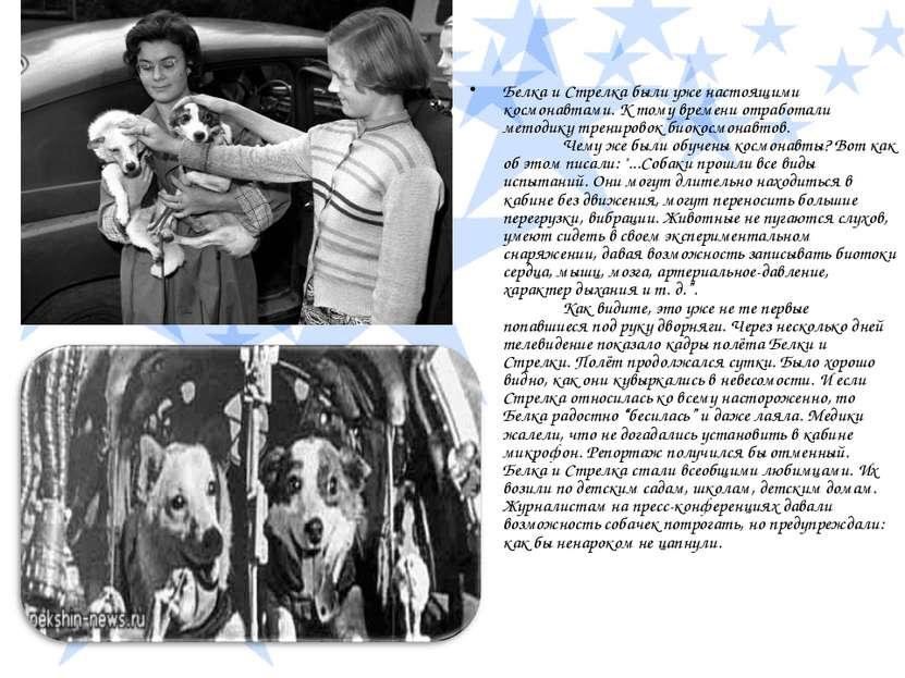 Белка и Стрелка были уже настоящими космонавтами. К тому времени отработали м...