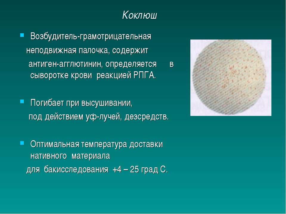 Коклюш Возбудитель-грамотрицательная неподвижная палочка, содержит антиген-аг...