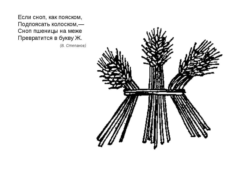 Если сноп, как пояском, Подпоясать колоском,— Сноп пшеницы на меже Превратитс...