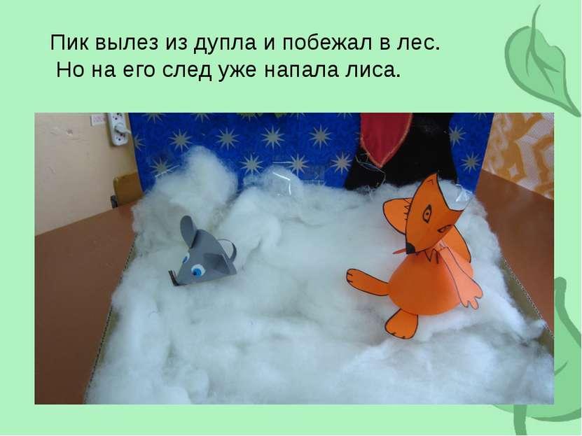 Пик вылез из дупла и побежал в лес. Но на его след уже напала лиса.