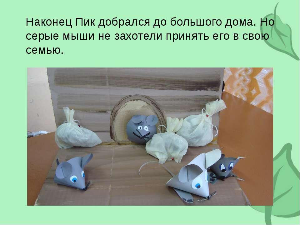 Наконец Пик добрался до большого дома. Но серые мыши не захотели принять его ...