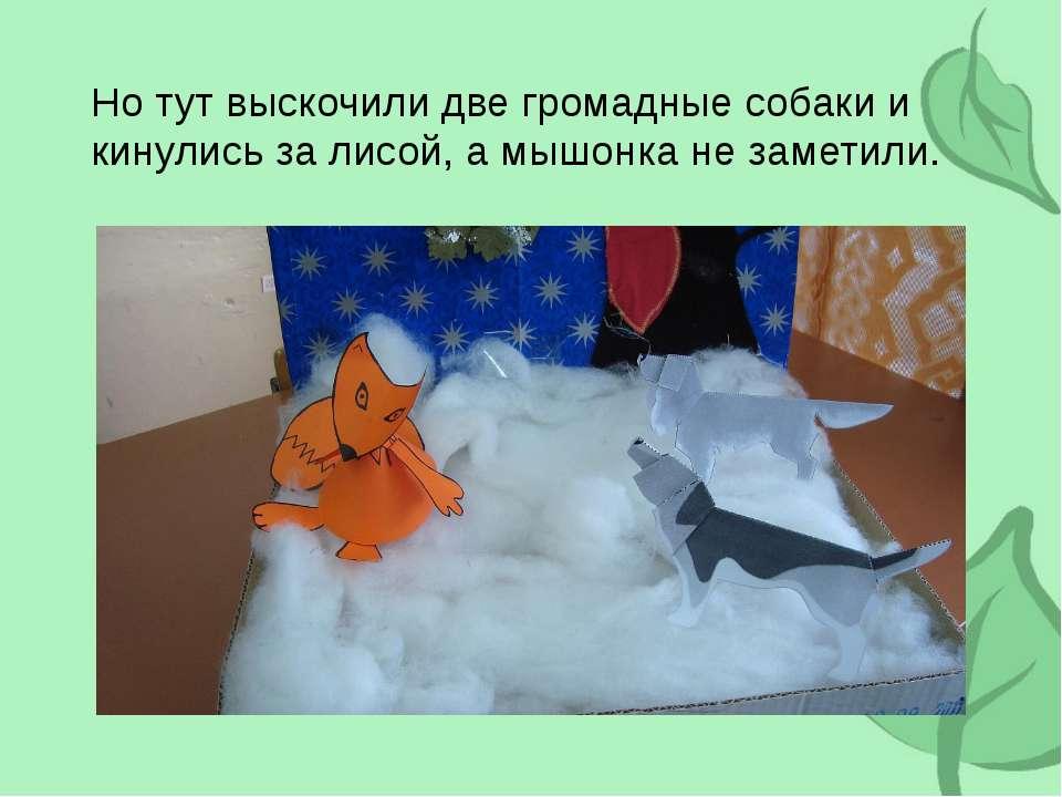 Но тут выскочили две громадные собаки и кинулись за лисой, а мышонка не замет...