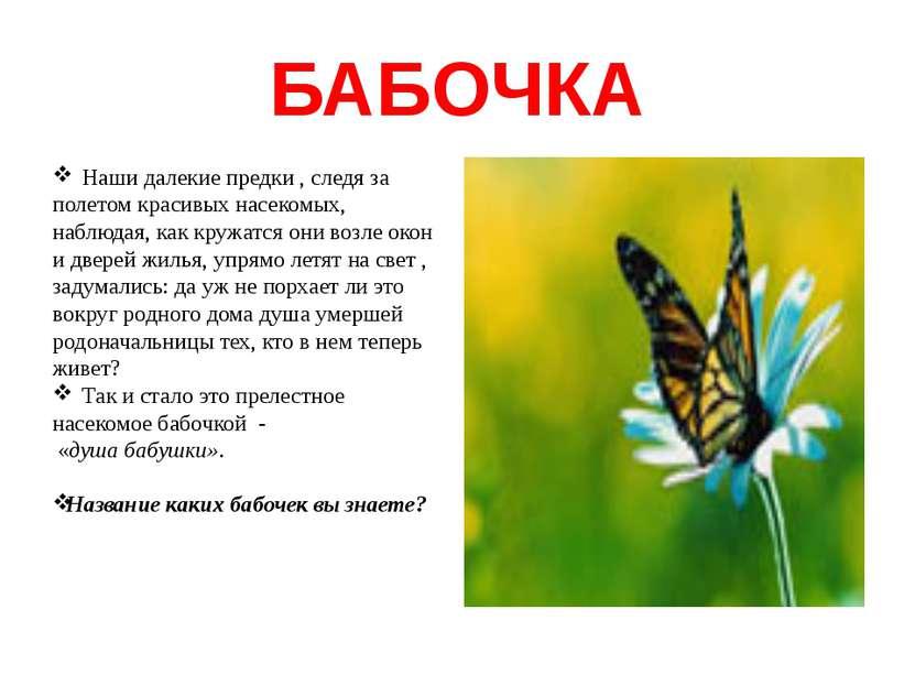 БАБОЧКА Наши далекие предки , следя за полетом красивых насекомых, наблюдая, ...