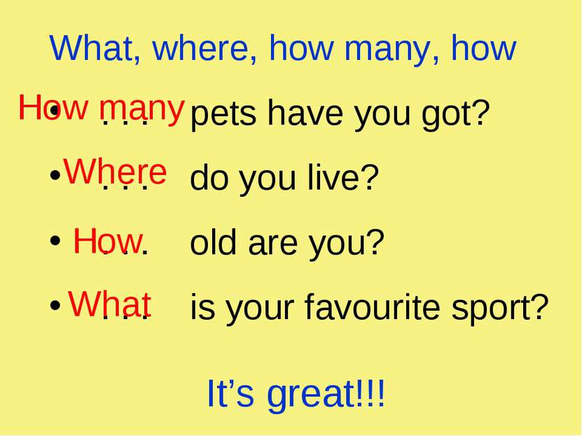 What, where, how many, how . . . pets have you got? . . . do you live? . . . ...