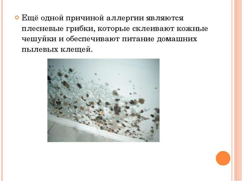 Ещё одной причиной аллергии являются плесневые грибки, которые склеивают кожн...