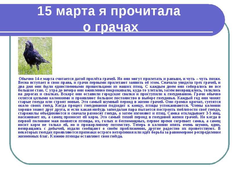15 марта я прочитала о грачах Обычно 14-е марта считается датой прилёта граче...