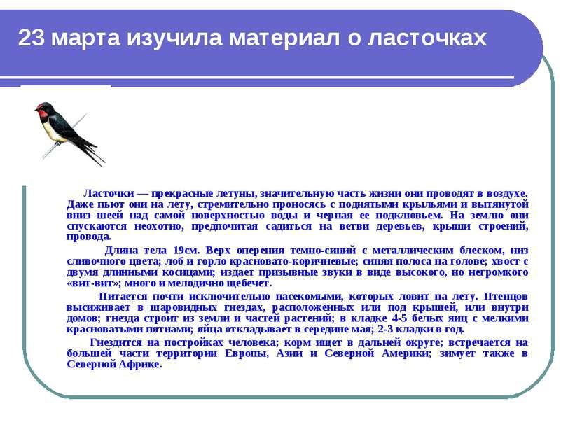 23 марта изучила материал о ласточках Ласточки — прекрасные летуны, значитель...