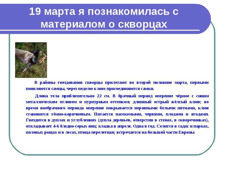 19 марта я познакомилась с материалом о скворцах В районы гнездования скворцы...
