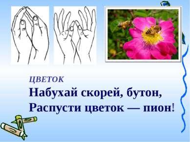ЦВЕТОК Набухай скорей, бутон, Распусти цветок — пион!