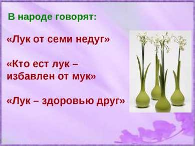 В народе говорят: «Лук от семи недуг» «Кто ест лук – избавлен от мук» «Лук – ...