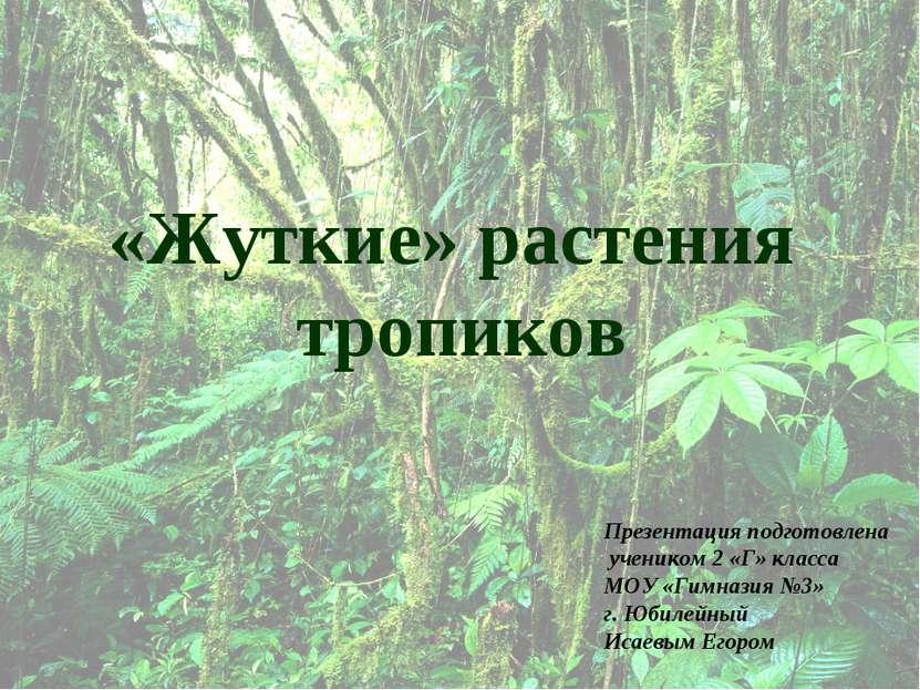 «Жуткие» растения тропиков Презентация подготовлена учеником 2 «Г» класса МОУ...