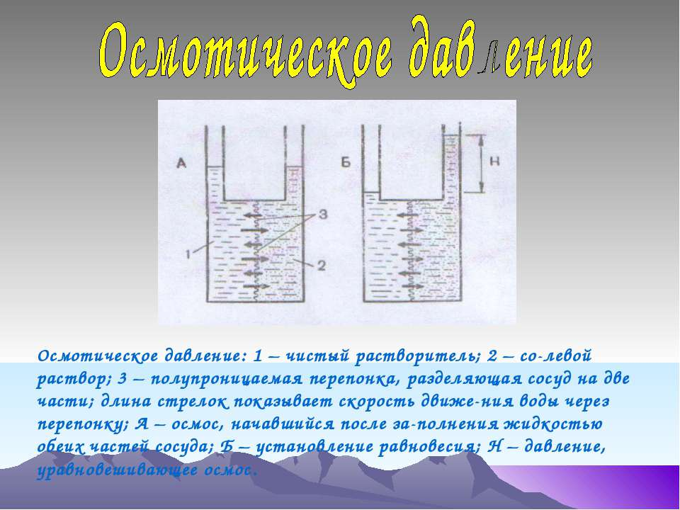 Осмотическое давление: 1 – чистый растворитель; 2 – со-левой раствор; 3 – пол...