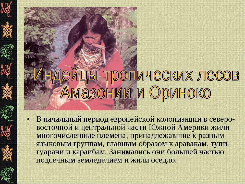 В начальный период европейской колонизации в северо-восточной и центральной ч...