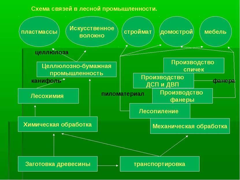 Заготовка древесины транспортировка Целлюлозно-бумажная промышленность Лесохи...