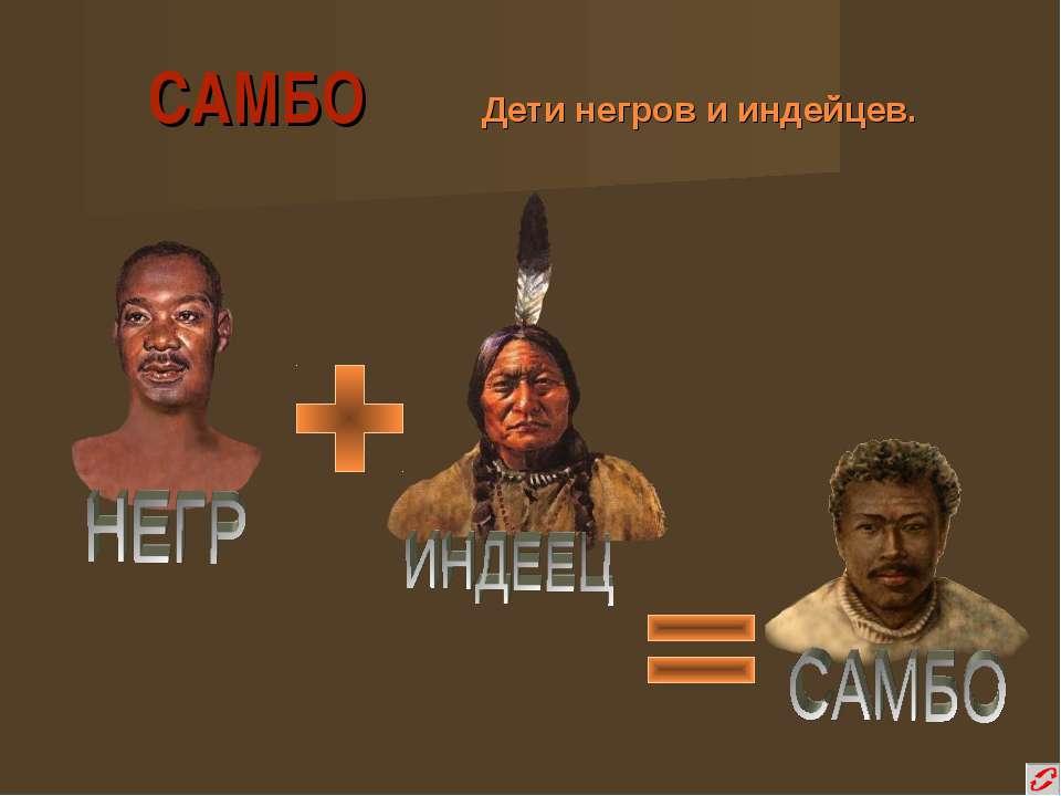 САМБО Дети негров и индейцев.