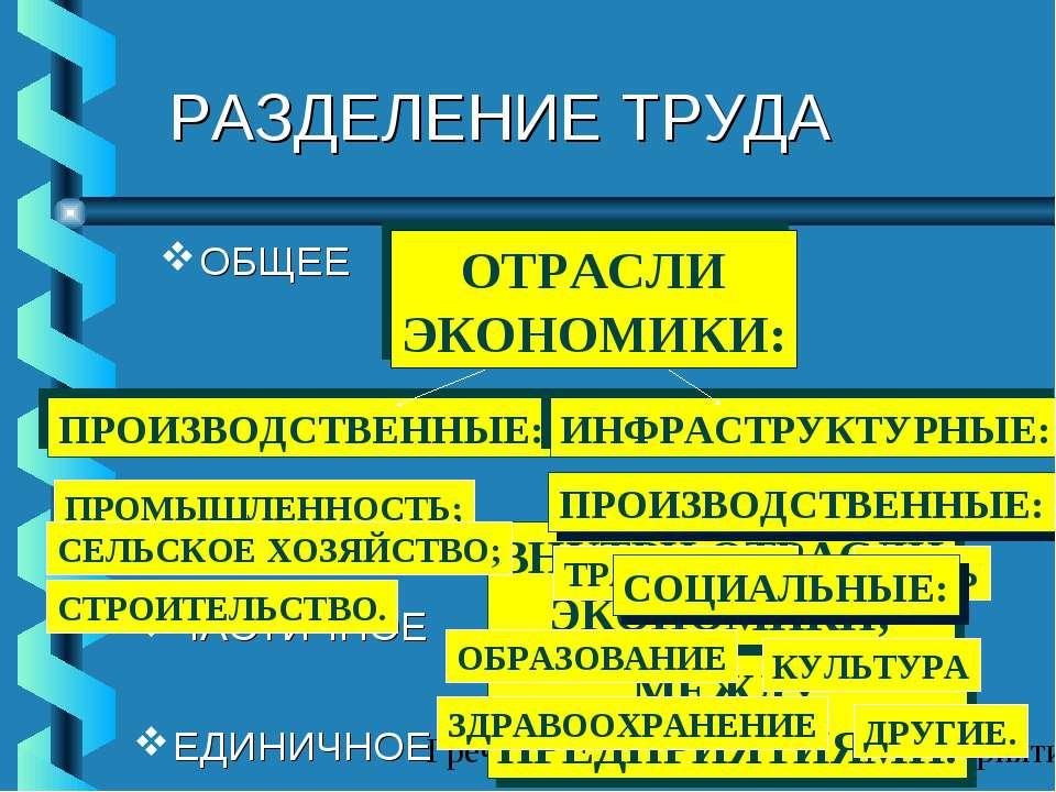 РАЗДЕЛЕНИЕ ТРУДА ОБЩЕЕ ЧАСТИЧНОЕ ЕДИНИЧНОЕ ОТРАСЛИ ЭКОНОМИКИ: ПРОИЗВОДСТВЕННЫ...