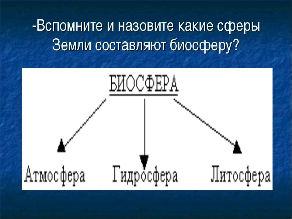 -Вспомните и назовите какие сферы Земли составляют биосферу?