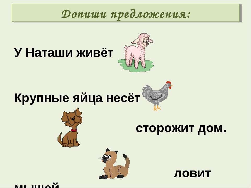 Допиши предложения: У Наташи живёт Крупные яйца несёт сторожит дом. ловит мышей.