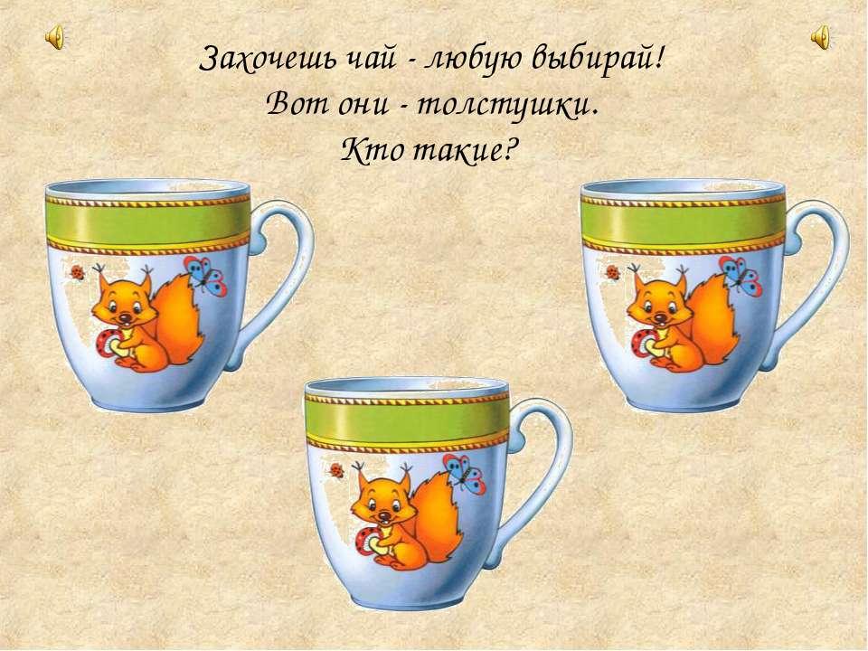 Захочешь чай - любую выбирай! Вот они - толстушки. Кто такие?
