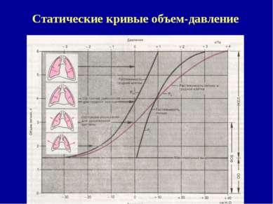Статические кривые объем-давление