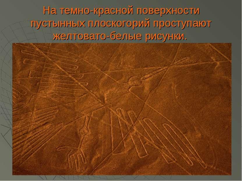 На темно-красной поверхности пустынных плоскогорий проступают желтовато-белые...