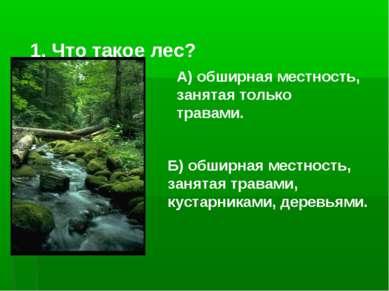 1. Что такое лес? Б) обширная местность, занятая травами, кустарниками, дерев...
