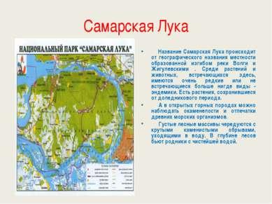 Самарская Лука Название Самарская Лука происходит от географического названия...