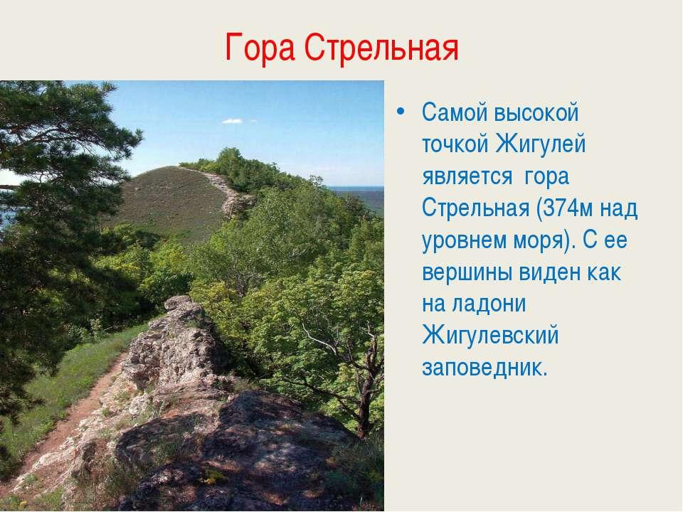 Гора Стрельная Самой высокой точкой Жигулей является гора Стрельная (374м над...