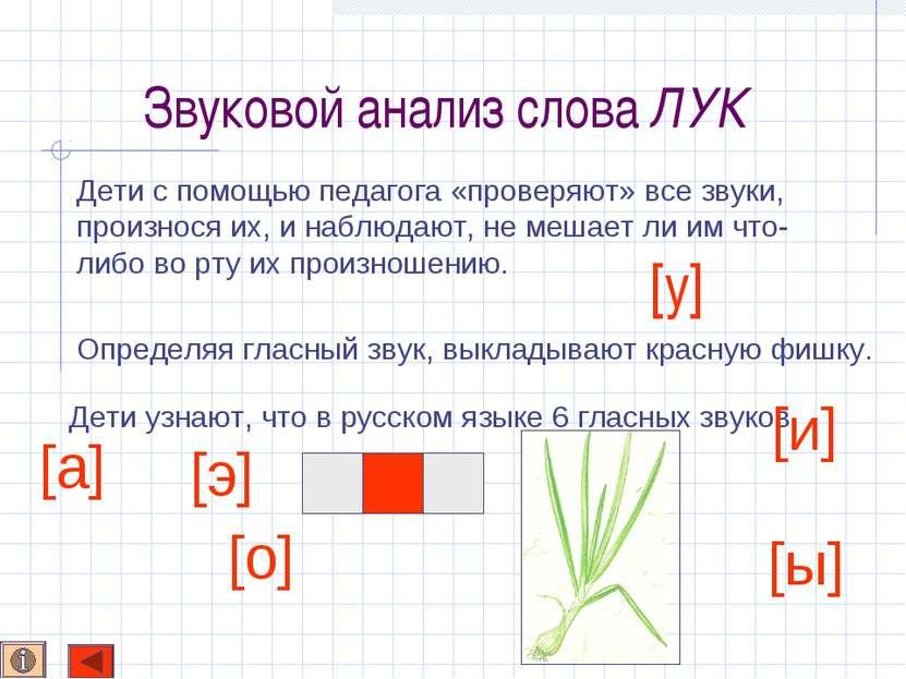 Звуковой анализ слова ЛУК Определяя гласный звук, выкладывают красную фишку. ...