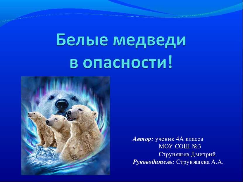 Автор: ученик 4А класса МОУ СОШ №3 Струняшев Дмитрий Руководитель: Струняшева...