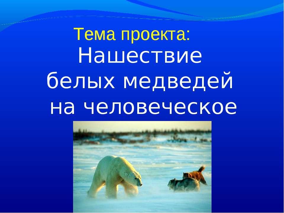 Тема проекта: Нашествие белых медведей на человеческое жилье.