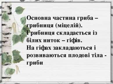 Основна частина гриба – грибниця (міцелій). Грибниця складається із білих нит...
