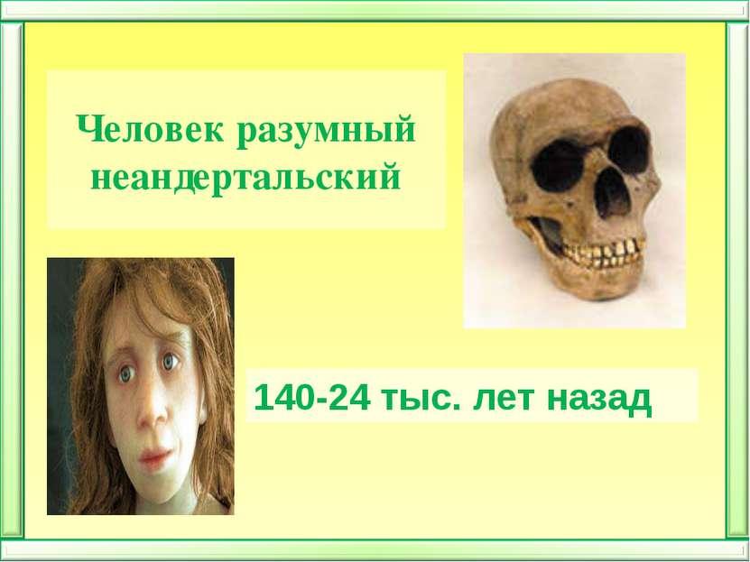 Человек разумный неандертальский 140-24 тыс. лет назад
