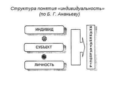 Структура понятия «индивидуальность» (по Б. Г. Ананьеву)