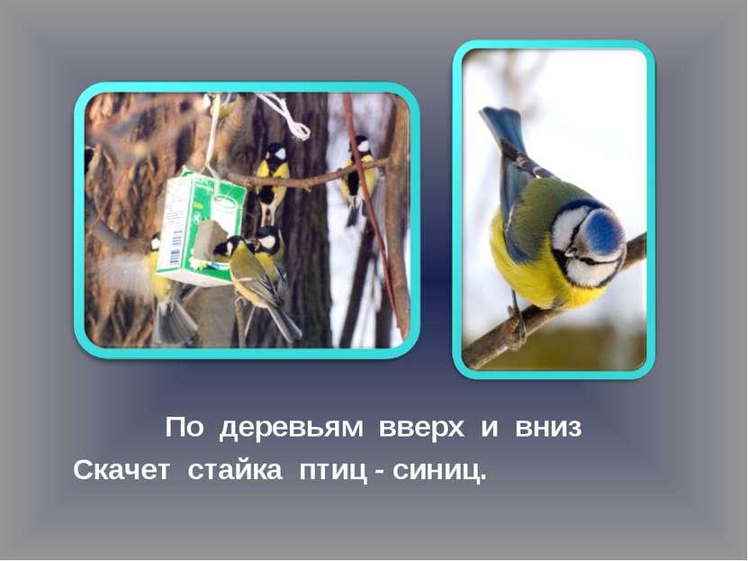 По деревьям вверх и вниз Скачет стайка птиц - синиц.