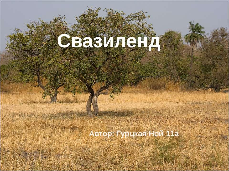 Свазиленд Автор: Гурцкая Ной 11а
