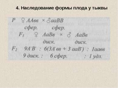 4. Наследование формы плода у тыквы