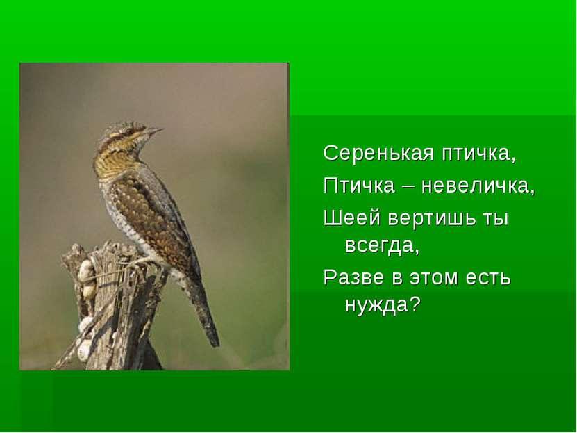 Серенькая птичка, Птичка – невеличка, Шеей вертишь ты всегда, Разве в этом ес...