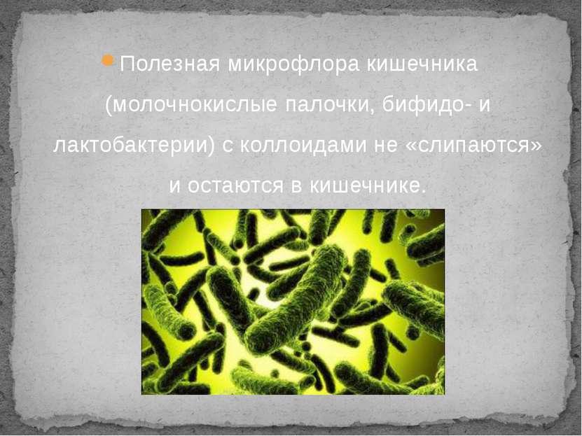 Полезная микрофлора кишечника (молочнокислые палочки, бифидо- и лактобактерии...