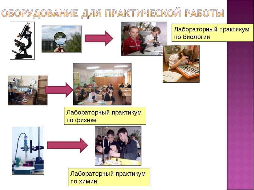 Лабораторный практикум по биологии Лабораторный практикум по физике Лаборатор...