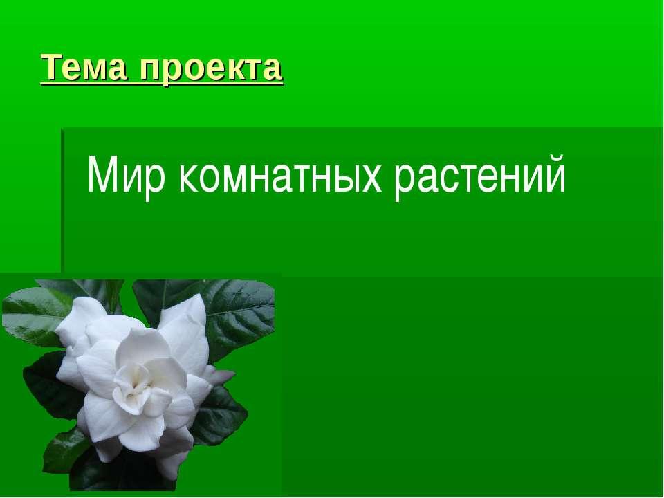 Тема проекта Мир комнатных растений