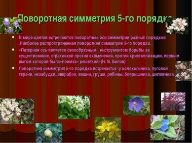 Поворотная симметрия 5-го порядка. В мире цветов встречаются поворотные оси с...