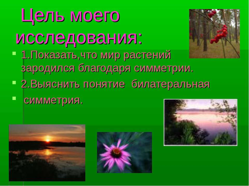 Цель моего исследования: 1.Показать,что мир растений зародился благодаря симм...
