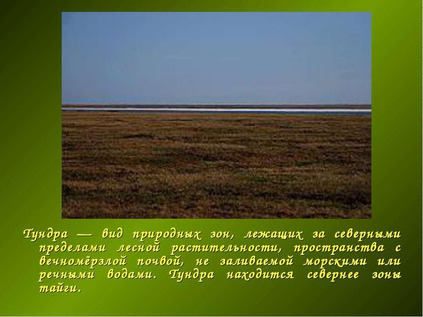 Тундра — вид природных зон, лежащих за северными пределами лесной растительно...