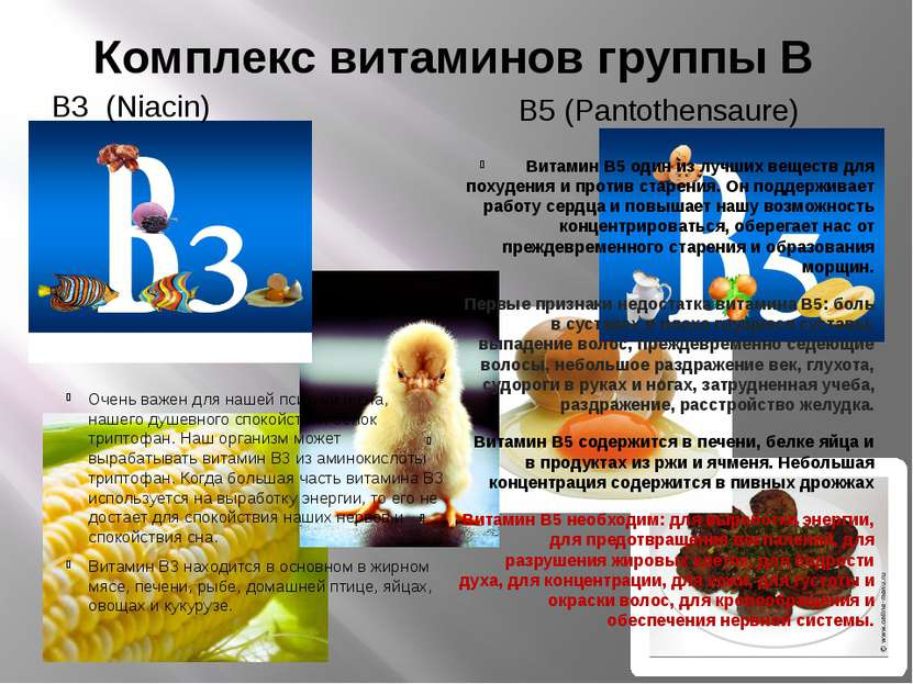 Комплекс витаминов группы В В3 (Niacin) В5 (Pantothensaure) Очень важен для ...