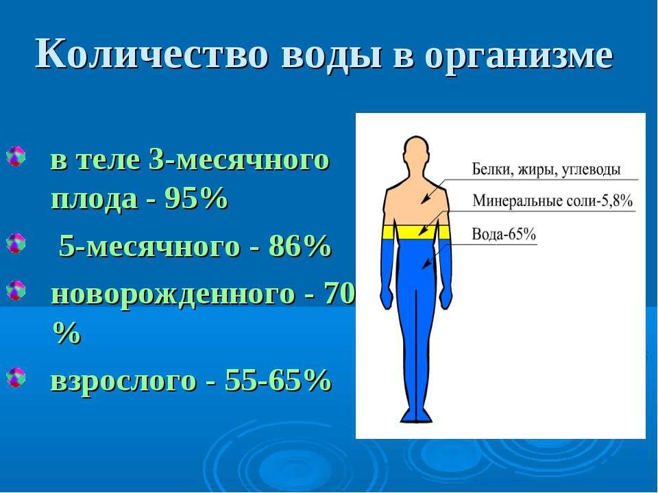 Количество воды в организме в теле 3-месячного плода - 95% 5-месячного - 86% ...