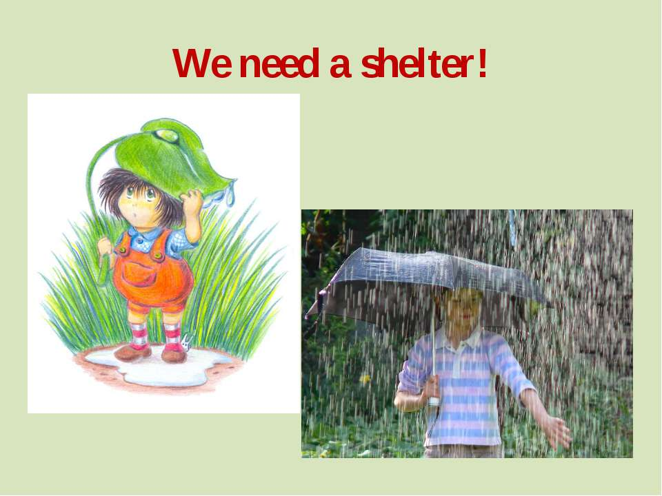 We need a shelter!