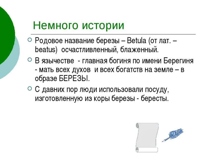 Немного истории Родовое название березы – Betula (от лат. – beatus) осчастлив...